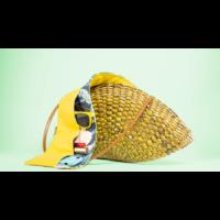 Tropical táskarendező